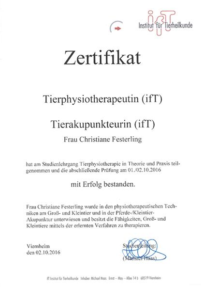 ifT – Zertifikat